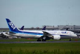 KAZKAZさんが、成田国際空港で撮影した全日空 787-8 Dreamlinerの航空フォト(飛行機 写真・画像)