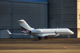 KAZKAZさんが、成田国際空港で撮影したネットジェット・インターナショナル BD-700-1A10 Global 6000の航空フォト(飛行機 写真・画像)