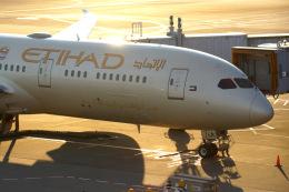 KAZKAZさんが、成田国際空港で撮影したエティハド航空 787-9の航空フォト(飛行機 写真・画像)