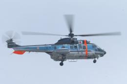 senyoさんが、東京ヘリポートで撮影した警視庁 AS332L1 Super Pumaの航空フォト(飛行機 写真・画像)