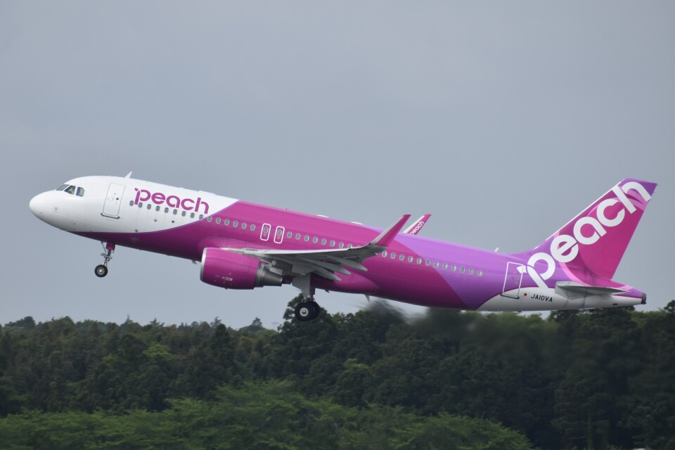 PIRORINGさんのピーチ Airbus A320 (JA10VA) 航空フォト