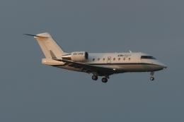 木人さんが、成田国際空港で撮影した不明 CL-600-2B16 Challenger 604の航空フォト(飛行機 写真・画像)