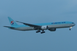 木人さんが、成田国際空港で撮影した大韓航空 777-3B5/ERの航空フォト(飛行機 写真・画像)