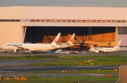 チャレンジャーさんが、羽田空港で撮影した日本航空 777-346の航空フォト(飛行機 写真・画像)
