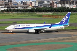 kan787allさんが、福岡空港で撮影した全日空 737-881の航空フォト(飛行機 写真・画像)
