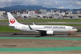 kan787allさんが、福岡空港で撮影した日本航空 737-846の航空フォト(飛行機 写真・画像)