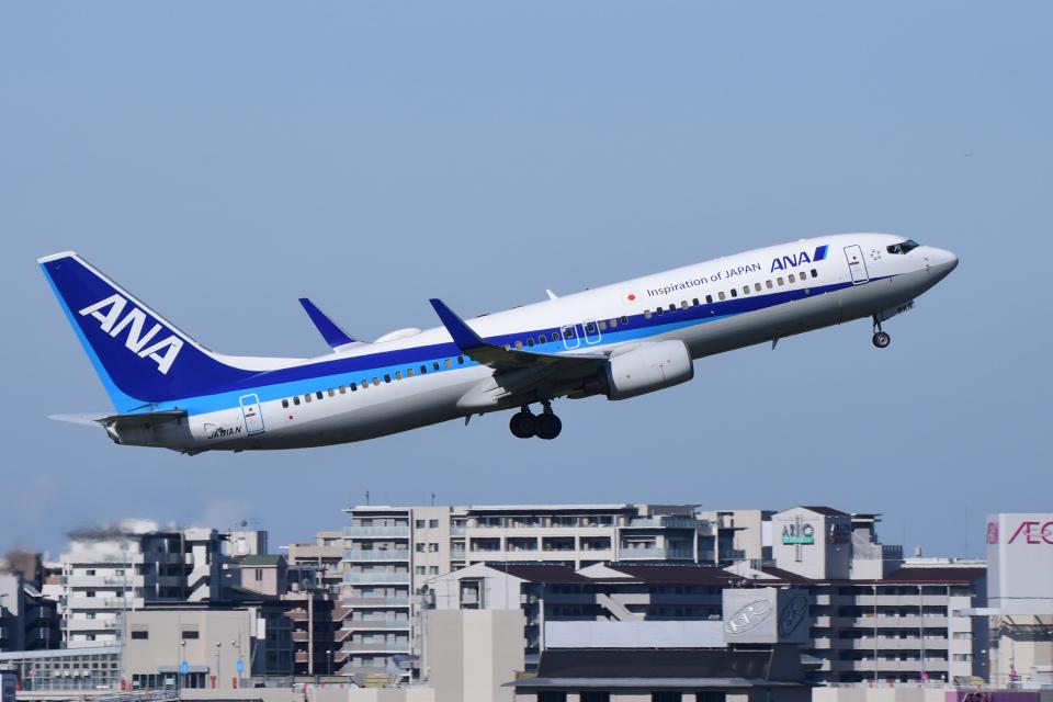 TOPAZ102さんの全日空 Boeing 737-800 (JA81AN) 航空フォト