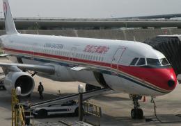 チャーリーマイクさんが、上海浦東国際空港で撮影した中国東方航空 A321-211の航空フォト(飛行機 写真・画像)