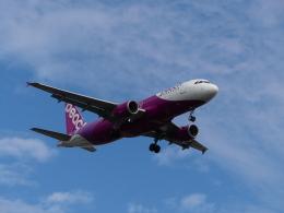 ケイエスワルツオーさんが、福岡空港で撮影したピーチ A320-214の航空フォト(飛行機 写真・画像)