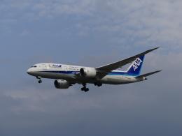 ケイエスワルツオーさんが、福岡空港で撮影した全日空 787-8 Dreamlinerの航空フォト(飛行機 写真・画像)
