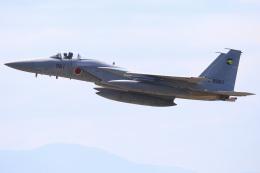 ちゅういちさんが、小松空港で撮影した航空自衛隊 F-15J Eagleの航空フォト(飛行機 写真・画像)
