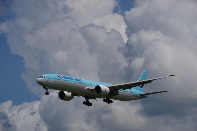 JA8037さんが、成田国際空港で撮影した大韓航空 777-3B5/ERの航空フォト(飛行機 写真・画像)