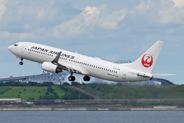 シグナス021さんが、羽田空港で撮影した日本航空 737-846の航空フォト(飛行機 写真・画像)