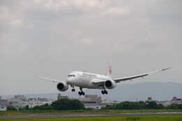 平凡なおっちゃんさんが、伊丹空港で撮影した日本航空 787-8 Dreamlinerの航空フォト(飛行機 写真・画像)