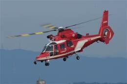 minoyanさんが、名古屋飛行場で撮影した名古屋市消防航空隊 AS365N3 Dauphin 2の航空フォト(飛行機 写真・画像)