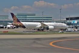 OMAさんが、羽田空港で撮影したビスタラ 787-9の航空フォト(飛行機 写真・画像)