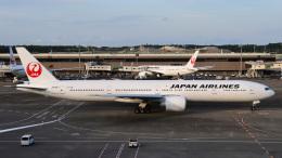 Bluewingさんが、成田国際空港で撮影した日本航空 777-346/ERの航空フォト(飛行機 写真・画像)