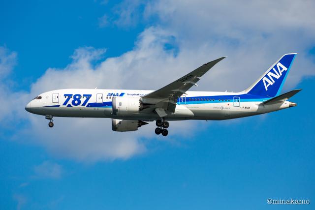 みなかもさんが、羽田空港で撮影した全日空 787-8 Dreamlinerの航空フォト(飛行機 写真・画像)