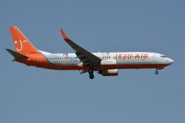 Deepさんが、成田国際空港で撮影したチェジュ航空 737-8ASの航空フォト(飛行機 写真・画像)