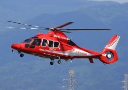 LOTUSさんが、八尾空港で撮影したエアバス・ヘリコプターズ・ジャパン EC155B1の航空フォト(飛行機 写真・画像)
