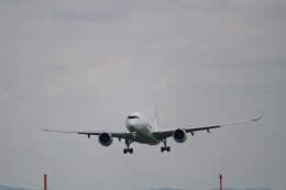平凡なおっちゃんさんが、伊丹空港で撮影した日本航空 A350-941の航空フォト(飛行機 写真・画像)