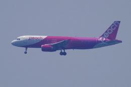 yabyanさんが、中部国際空港で撮影したピーチ A320-214の航空フォト(飛行機 写真・画像)