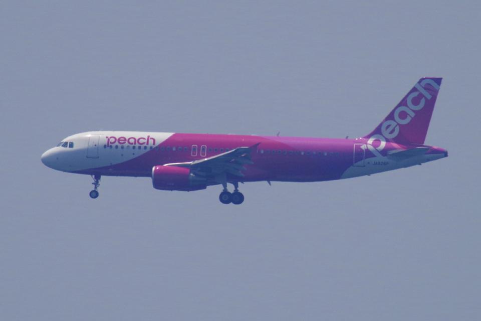 yabyanさんのピーチ Airbus A320 (JA826P) 航空フォト