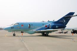 woodpeckerさんが、松島基地で撮影した航空自衛隊 U-125A(Hawker 800)の航空フォト(飛行機 写真・画像)