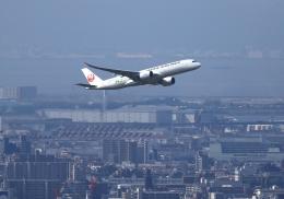 LOTUSさんが、伊丹空港で撮影した日本航空 A350-941の航空フォト(飛行機 写真・画像)