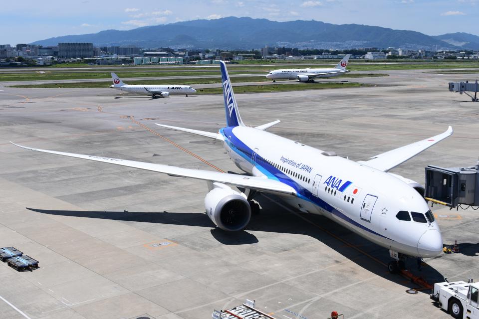 TOPAZ102さんの全日空 Boeing 787-8 Dreamliner (JA821A) 航空フォト