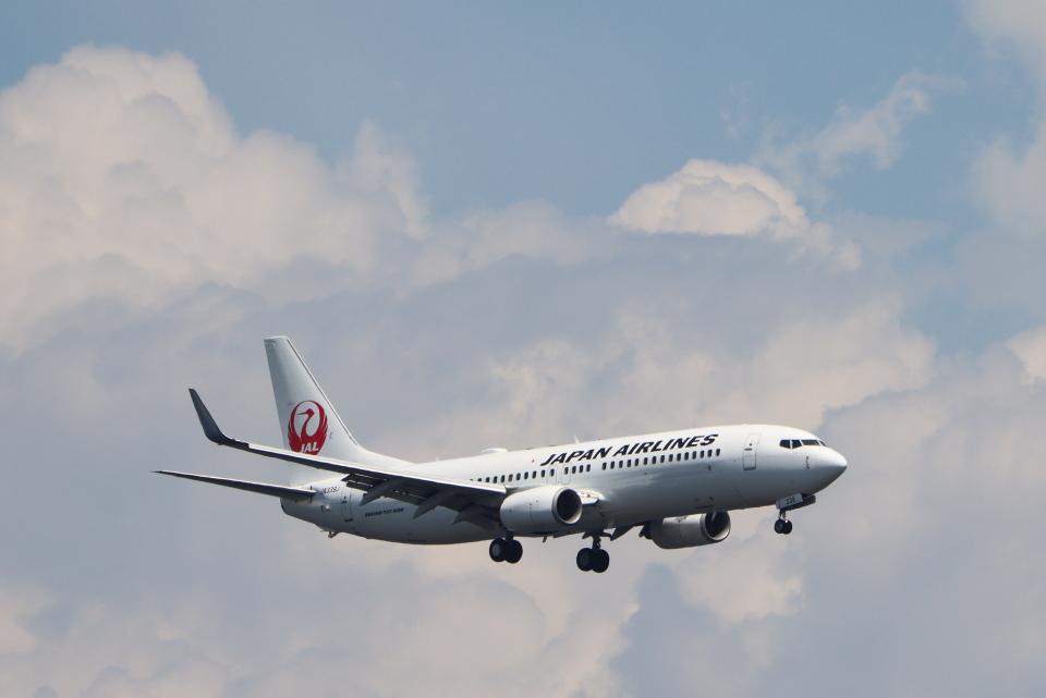 imosaさんの日本航空 Boeing 737-800 (JA339J) 航空フォト
