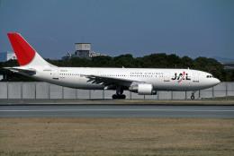 Gambardierさんが、伊丹空港で撮影した日本航空 A300B4-622Rの航空フォト(飛行機 写真・画像)