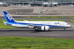 kuraykiさんが、羽田空港で撮影した全日空 787-8 Dreamlinerの航空フォト(飛行機 写真・画像)