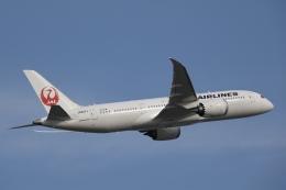 KOKI_ANA-Brussels767さんが、羽田空港で撮影した日本航空 787-8 Dreamlinerの航空フォト(飛行機 写真・画像)