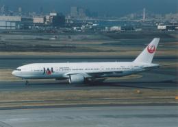プルシアンブルーさんが、羽田空港で撮影した日本航空 777-246の航空フォト(飛行機 写真・画像)