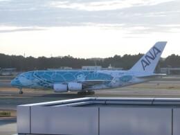 不揃いさんが、成田国際空港で撮影した全日空 A380-841の航空フォト(飛行機 写真・画像)