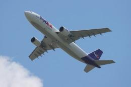 マーサさんが、成田国際空港で撮影したフェデックス・エクスプレス A300F4-605Rの航空フォト(飛行機 写真・画像)