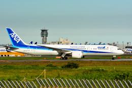 アルビレオさんが、成田国際空港で撮影した全日空 787-9の航空フォト(飛行機 写真・画像)