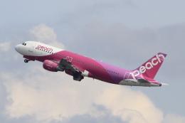 キイロイトリさんが、関西国際空港で撮影したピーチ A320-214の航空フォト(飛行機 写真・画像)