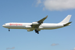 banshee02さんが、成田国際空港で撮影したスパイスジェット A340-313Xの航空フォト(飛行機 写真・画像)