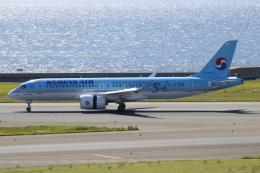 ▲®さんが、中部国際空港で撮影した大韓航空 A220-300 (BD-500-1A11)の航空フォト(飛行機 写真・画像)