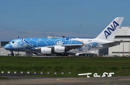 tassさんが、成田国際空港で撮影した全日空 A380-841の航空フォト(飛行機 写真・画像)