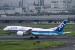 sakaki787さんが、羽田空港で撮影した全日空 787-8 Dreamlinerの航空フォト(飛行機 写真・画像)