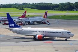 tasho0525さんが、ハンブルク空港で撮影したスカンジナビア航空 737-883の航空フォト(飛行機 写真・画像)