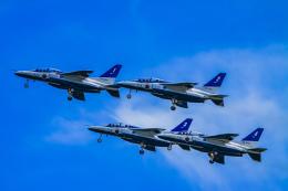 rokko2000さんが、米子空港で撮影した航空自衛隊 T-4の航空フォト(飛行機 写真・画像)