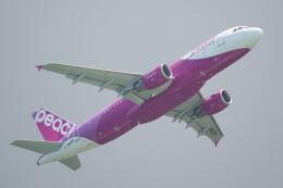 Flying Islanderさんが、那覇空港で撮影したピーチ A320-214の航空フォト(飛行機 写真・画像)