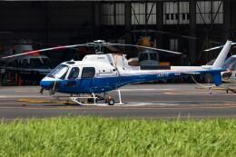 walker2000さんが、東京ヘリポートで撮影した東邦航空 AS350B3 Ecureuilの航空フォト(飛行機 写真・画像)