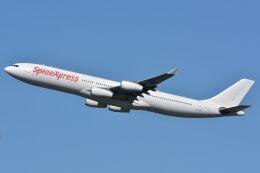 サンドバンクさんが、成田国際空港で撮影したハイ・フライ・マルタ A340-313Xの航空フォト(飛行機 写真・画像)