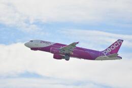天心さんが、関西国際空港で撮影したピーチ A320-214の航空フォト(飛行機 写真・画像)