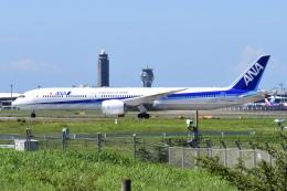 Timothyさんが、成田国際空港で撮影した全日空 787-10の航空フォト(飛行機 写真・画像)